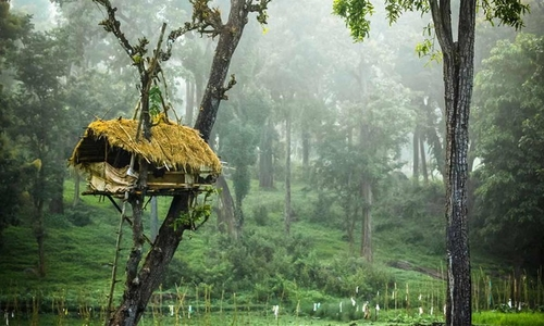 wayanad accommodation