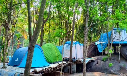 camping tent stay and trekking in wayanad